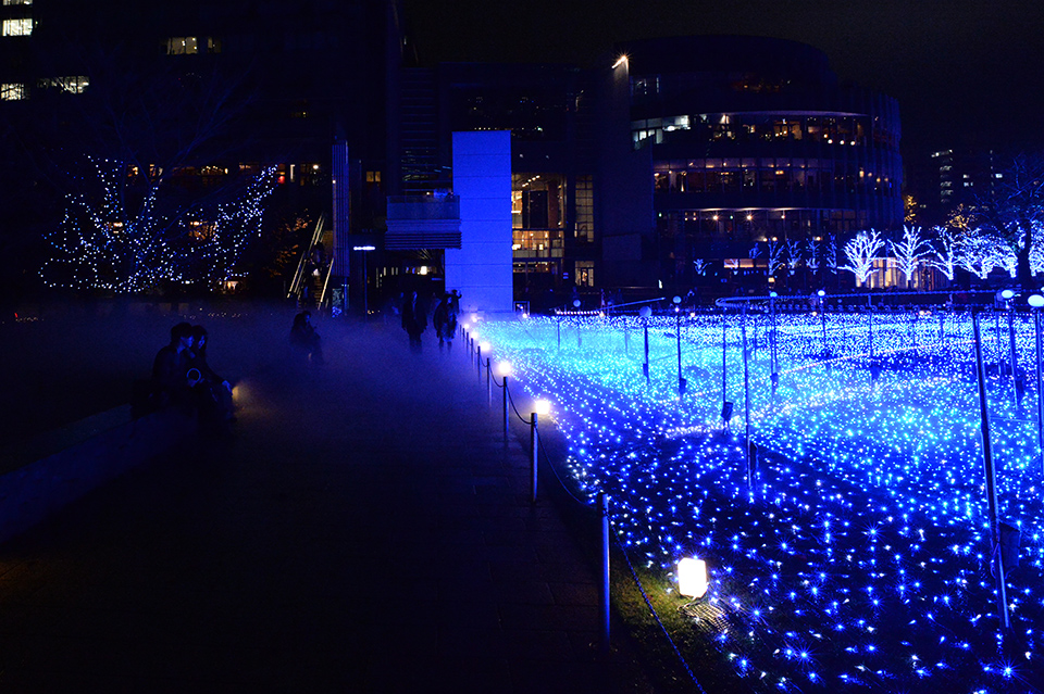 スターライトガーデン(Starlight Garden)