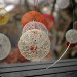 京都哲學之道深秋紅葉時期照片