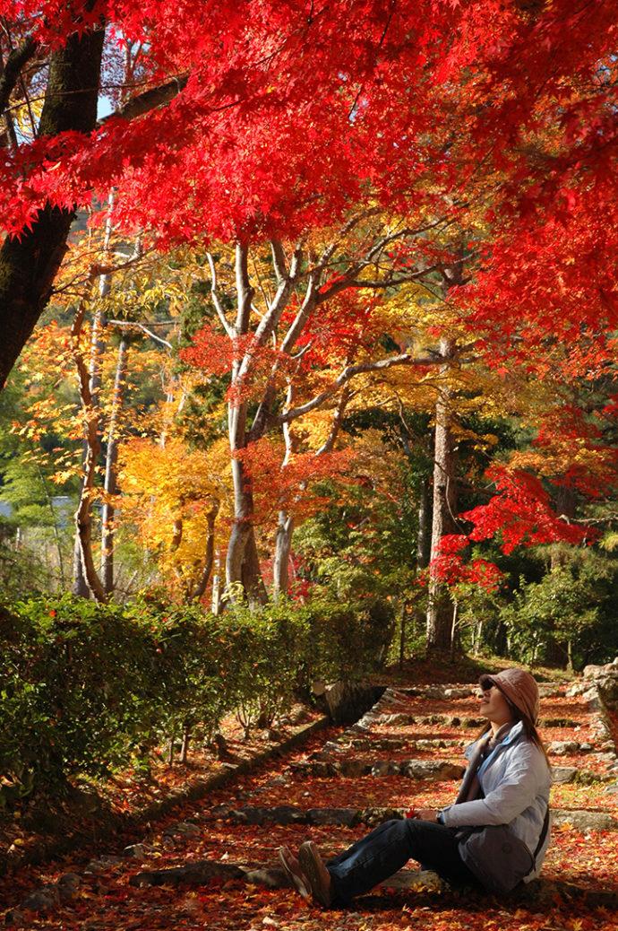 京都,我們走訪過的景點