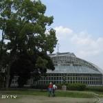 京都府立植物園之散步(風景篇)