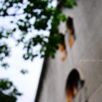 【那一瞬間】華山創意文化園區
