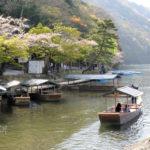 京都嵐山桂川川畔櫻花滿開