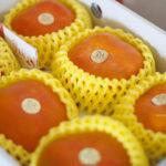 紅橙橙甜柿寶寶正好吃