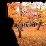 京都賞楓(紅葉)必訪景點東福寺‧濃厚的秋意
