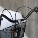 [北海道] 載一籃雪花回家