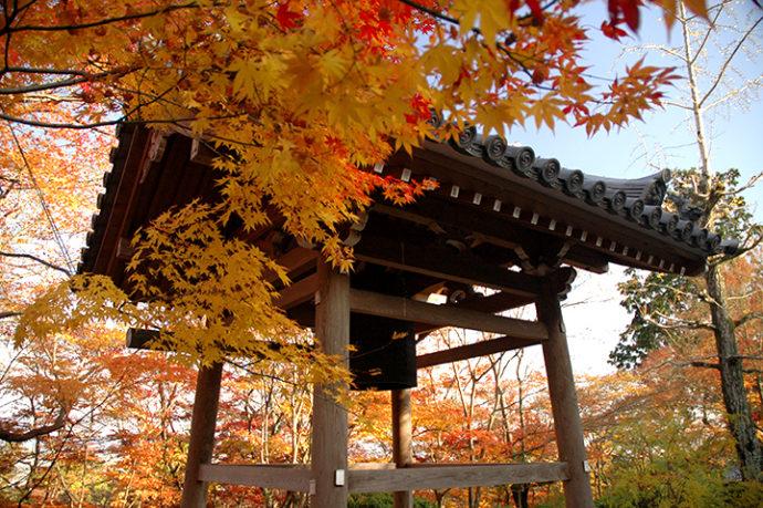 京都常寂光寺紅葉