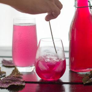 紅紫蘇糖漿