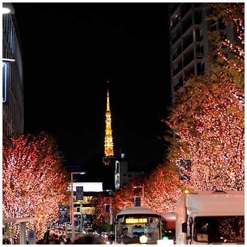 2014 日本東京深秋初冬之旅
